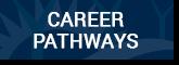 career-button